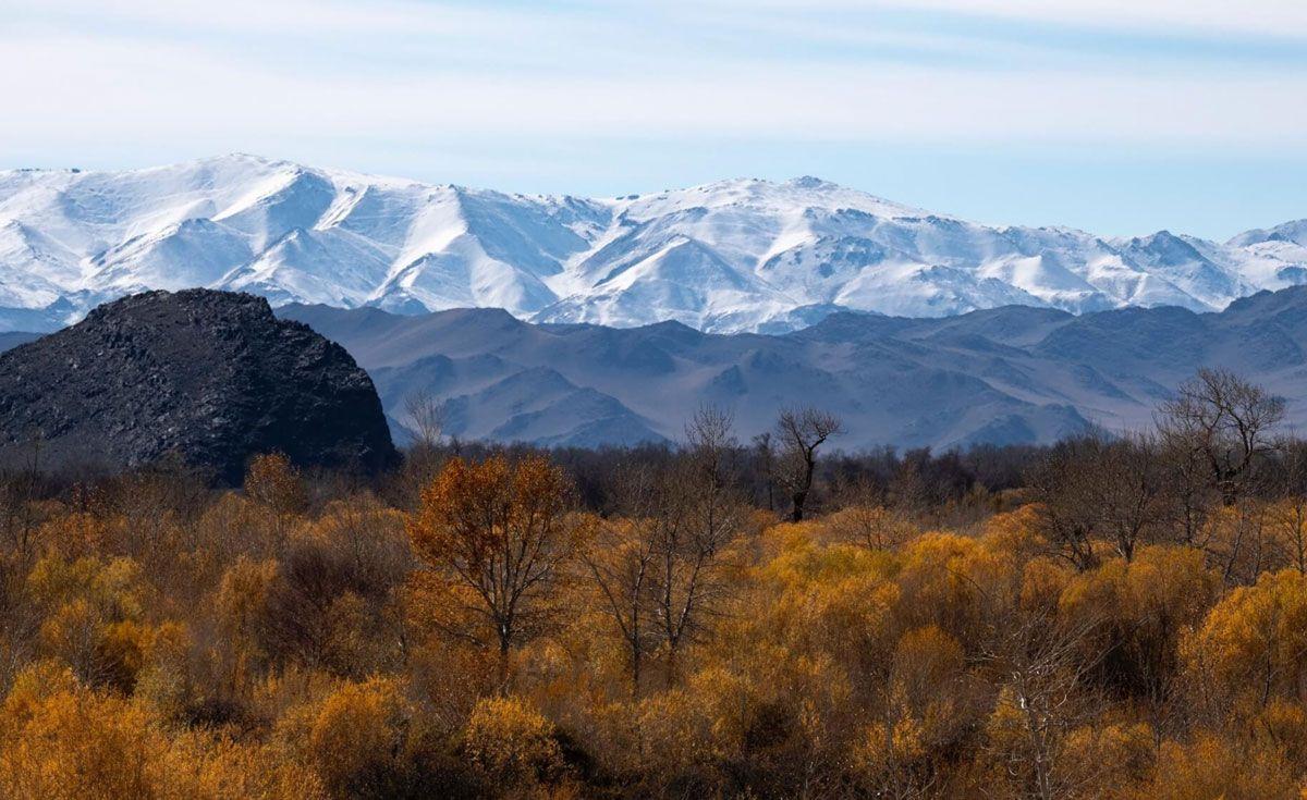 Teaching English in Mongolia